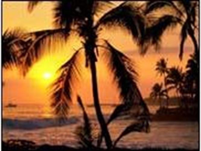 İşte en seksi 12 ada